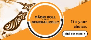 Māori Electoral optio 2